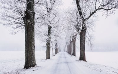 E-Auto Wintertipps: Gute Reichweite trotz Kälte